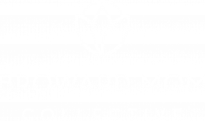 Broward County Mom Collective
